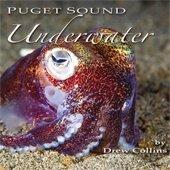 Puget Sound Underwater