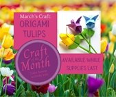 March Craft of the Month Kit for Teens and Adults are available now